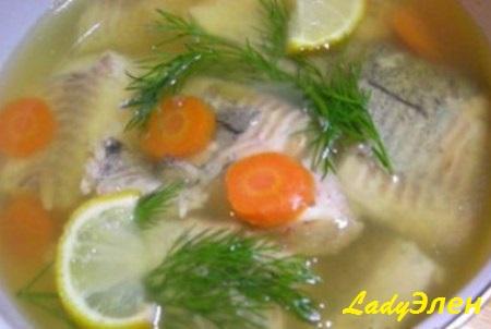 ryba-v-zhele